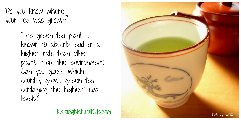 green tea lead