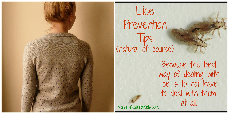 LicePreventionTips
