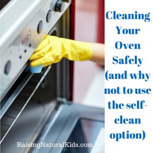 How to Clean Your Oven Safely (and why not to use the self-clean option)