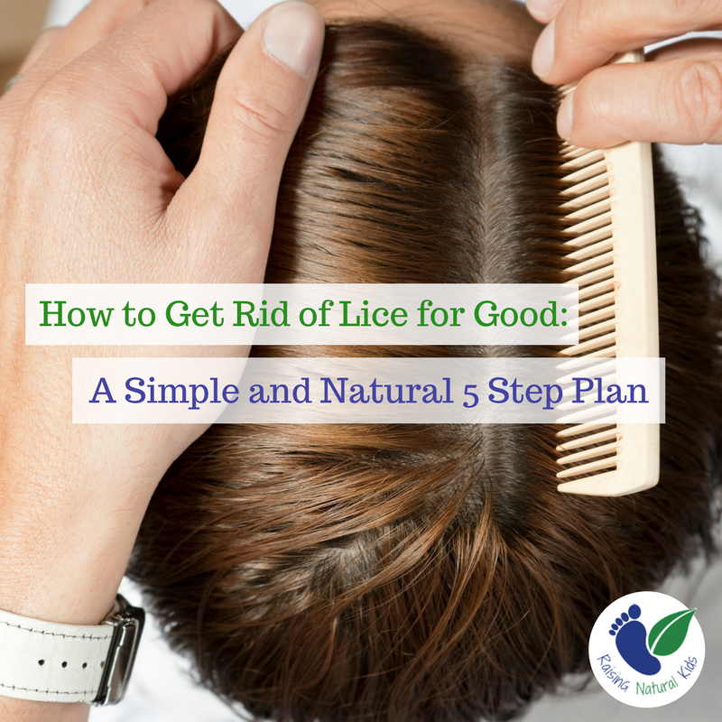 A 5 Step Plan For Natural Lice Treatment That Will Kill Lice For Good