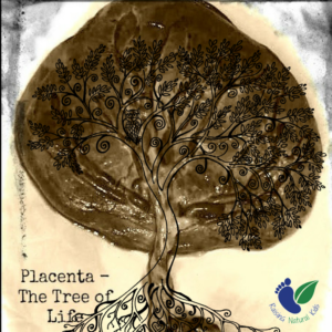 Why I Ate My Placenta (And Why Moms to Be May Consider It)