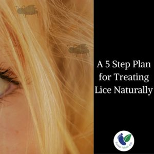 A 5 Step Natural Plan for Treating Head Lice