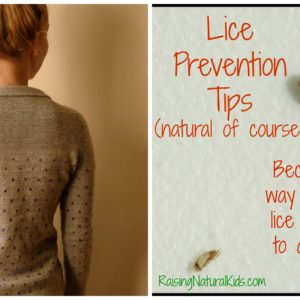 Preventing Lice So that You Don't Have to Deal With Them